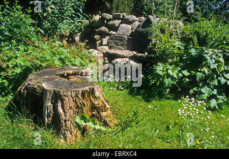 Natural garden with stump and heap of stones, stone cairn, Germany - Stock Photo