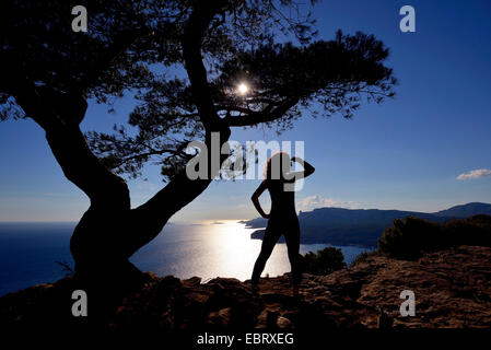 aleppo pine (Pinus halepensis), woman admires the view on the Mediterranean Sea in Calanques at Cassis, France, - Stock Photo