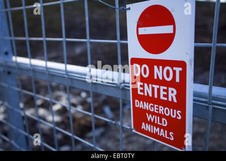 sign on gate to wild boar enclosure, United Kingdom, Scotland, Alladale - Stock Photo
