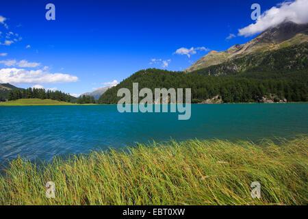 Lej da ChampfÞr, Lej Suot, Piz Surlej, Switzerland, Grisons, Engadine - Stock Photo