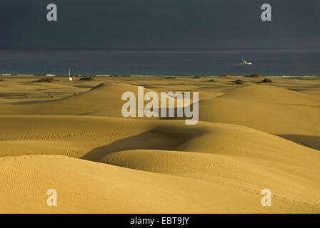 sand dunes at the sea in the light of the evening sun, Canary Islands, Gran Canaria, Maspalomas - Stock Photo