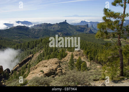 view from the Pico de las Nieves to the Roque Nublo und to Teneriffa, Canary Islands, Gran Canaria - Stock Photo