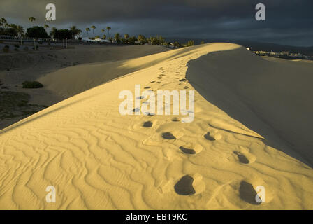 sand dunes at the edge of the coast town in the light of the evening sun, Canary Islands, Gran Canaria, Maspalomas - Stock Photo