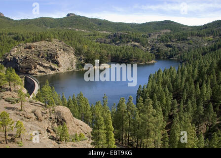 view from a mountain slope at a storage lake, Canary Islands, Gran Canaria, Presa de los Hornas - Stock Photo