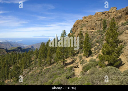view from the rock tower 'Roque Nublo' (cloud rock), landmark of the island, to Teneriffa, Canary Islands, Gran - Stock Photo