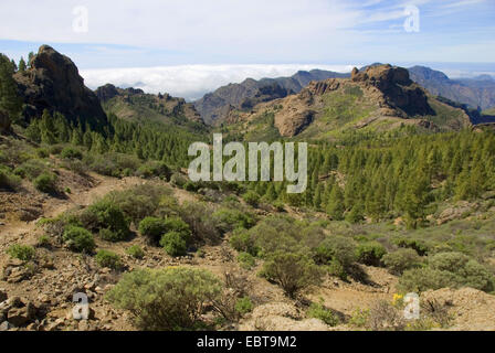 view from the rock tower 'Roque Nublo' (cloud rock), landmark of the island, to the South, Canary Islands, Gran - Stock Photo