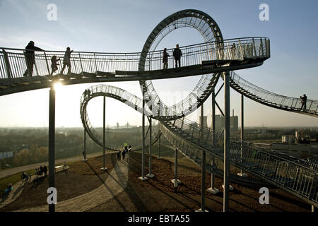 landmark Tiger and Turtle on stockpile Angerpark in evening light, Germany, North Rhine-Westphalia, Ruhr Area, Duisburg Stock Photo