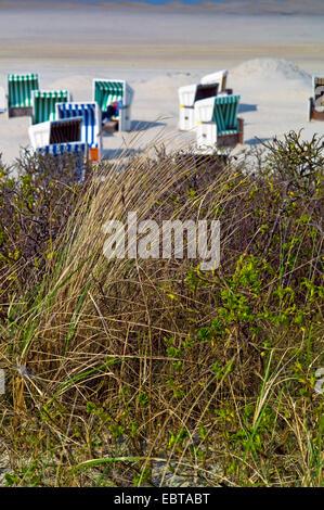 roofed wicker beach chairs on sandy beach, Germany, Lower Saxony, Wangerooge - Stock Photo