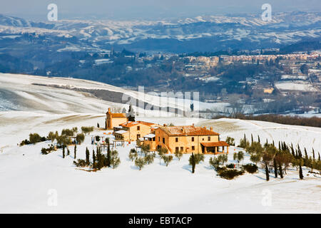 farmhouse in snow-covered landscape surrounded by cypresses, Italy, Tuscany, Pienza - Stock Photo