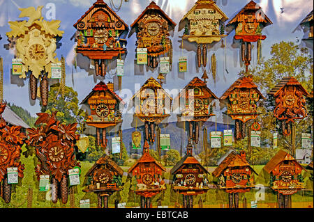 a lot of cockoo clocks in a shop window, Germany, Baden-Wuerttemberg, Black Forest, Triberg - Stock Photo
