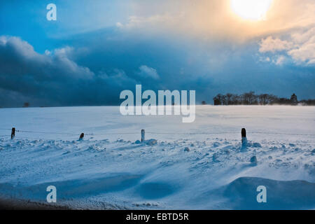 snow bank, Belgium, Ardennen, Winterlandschaft - Stock Photo