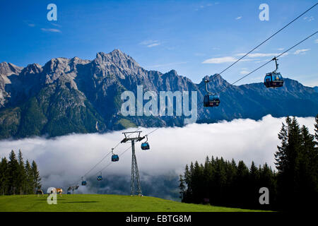 alpine pasture in the sunshine above a canyon filled with clouds, Austria, Salzburg, Salzburgerland, Leogang - Stock Photo