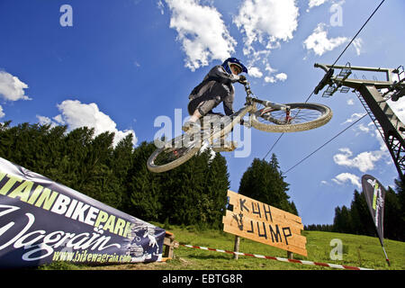 Mountain Bike Jump X Up One Foot Stock Photo Royalty Free Image