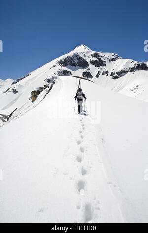 skier climbing up a snow-covered mountain crest, Austria, Grossglockner - Stock Photo