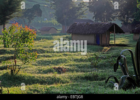 housing area in backlight, Uganda, Kisoro - Stock Photo