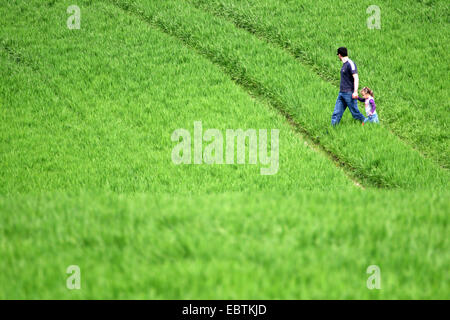 father with his little daughter walking across a field in spring, Germany, North Rhine-Westphalia - Stock Photo