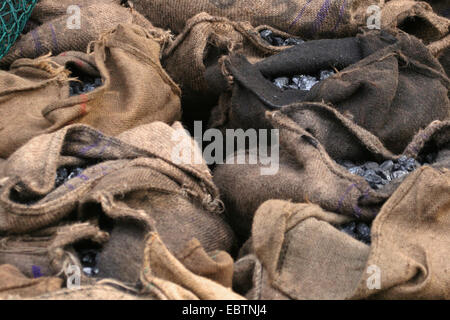 coals in sacks, Germany, North Rhine-Westphalia - Stock Photo