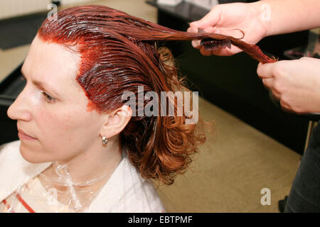 hairdresser dyeing woman's hair - Stock Photo