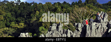 tourists in karst landscape, Madagascar, Nationalpark Tsingy de Bemaraha, Tsingy - Stock Photo