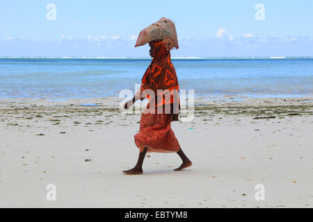 woman carrying a bag with seaweeds on her head on sandy beach, Tanzania, Sansibar - Stock Photo
