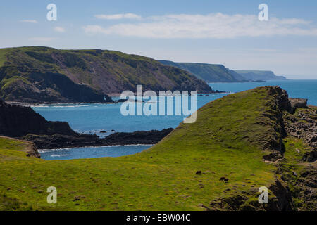 Rambling along the North Devon coast - Stock Photo