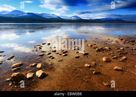 Loch Morlich at sunrise, United Kingdom, Scotland, Cairngorms National Park - Stock Photo
