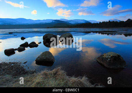 Loch Morlich in the morning, United Kingdom, Scotland, Cairngorms National Park - Stock Photo