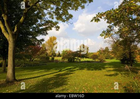 autumn colours in botanical garden copenhagen denmark europe stock photo royalty free image. Black Bedroom Furniture Sets. Home Design Ideas