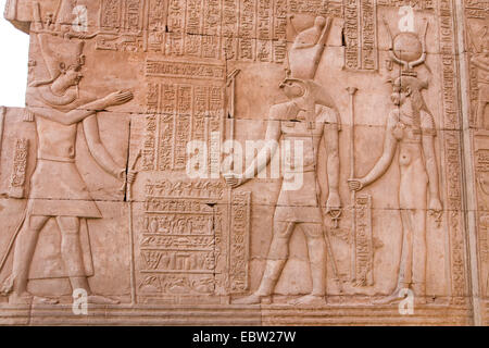 mural relief in the Temple of Kom Ombo for the falcon headed god Haroeris an the crocodile-god Sobek, Egypt, Kom - Stock Photo