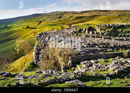 View of the top of Malham Cove, Yorkshire Dales National Park, UK - Stock Photo