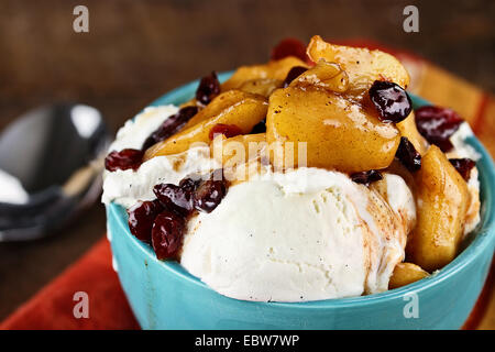 Bowl of rich creamy vanilla ice cream topped with an apple and cranberry sauce with extreme shallow depth of field. - Stock Photo