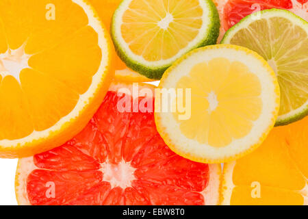 slices of citrus fruits, symbol for healthy vitamins with fresh fruits - Stock Photo