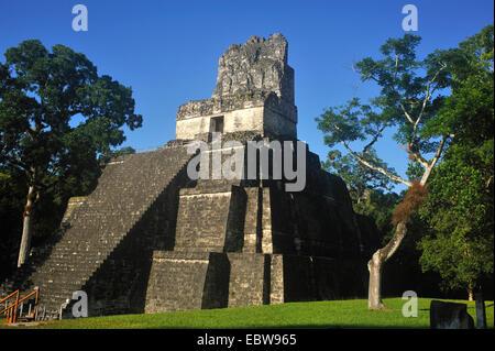 pyramid at the main square of the Maya city Tikal, Guatemala, Tikal - Stock Photo