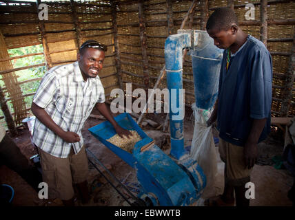 two men producing maize in their own mill meal for the local market, Burundi, Cankuzo, Near National Parc de la - Stock Photo