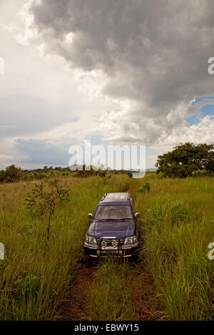four by four vehicle is driving through tall grass in the 'Parc de la Ruvubu' in the east of the country, Burundi, - Stock Photo