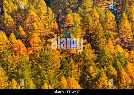 cable car over larches, Switzerland, Valais - Stock Photo