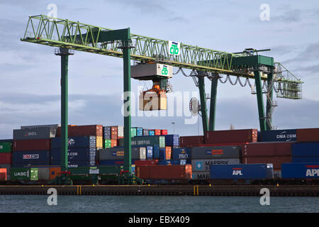 Container terminal in Dortmund harbour, Germany, North Rhine-Westphalia, Ruhr Area, Dortmund - Stock Photo