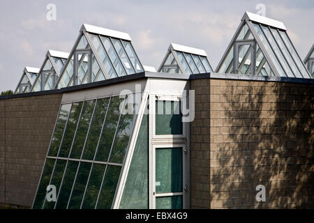 Roman Museum in Haltern am See, Germany, North Rhine-Westphalia, Ruhr Area, Haltern - Stock Photo