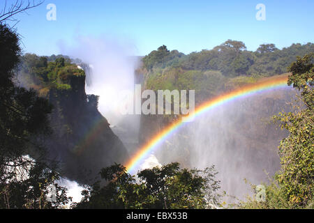 Victoria falls with rainbow, Zimbabwe, Victoria Falls National Park - Stock Photo