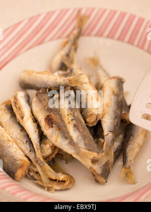 Fresh anchovies in the bowl close up - Stock Photo
