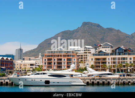 expensive motor yachts the harbour of Cape Town with new housing developments in the background, South Africa - Stock Photo