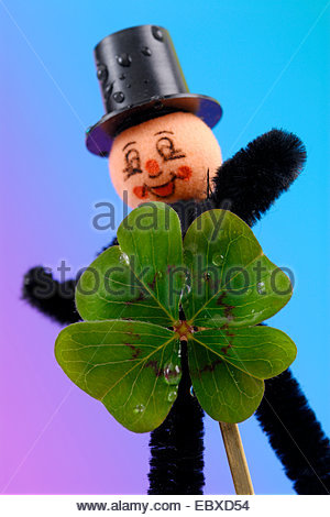 four-leafed clover (Oxalis tetraphylla, Oxalis deppei), chimney sweeper with shamrock - Stock Photo
