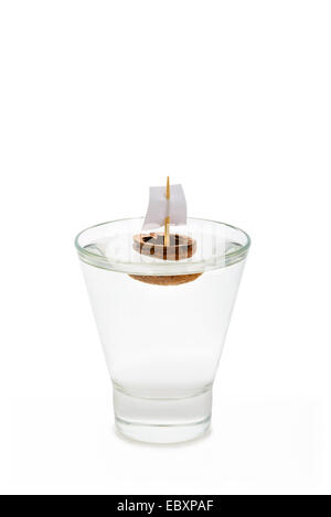 A walnut shell boat with a sail, floating in a transparent glass full of water or alcohol. - Stock Photo