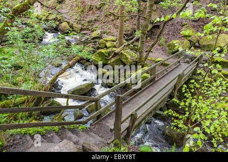 Wooden bridge over a stream, Burbage Brook, in Padley Gorge, Derbyshire, Peak District National Park, England, UK. - Stock Photo