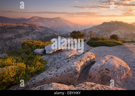 View towards Half Dome at sunset, from Olmsted Point, Yosemite National Park, California, USA. Autumn (October) - Stock Photo