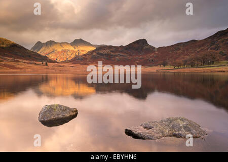 Early morning sunshine on the Langdale Pikes, reflected in Blea Tarn, Lake District, Cumbria, England. Autumn (November) 2014.