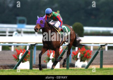 Kyoto, Japan. 30th Nov, 2014. Am Ball Bleiben (Ken Tanaka) Horse Racing : Am Ball Bleiben ridden by Ken Tanaka wins - Stock Photo