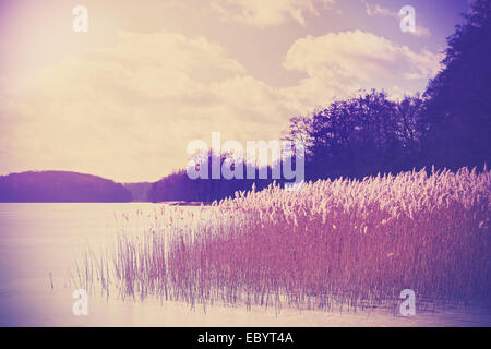 Vintage retro toned image of lake in winter. - Stock Photo