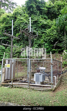 transformer vault at the forest - Stock Photo
