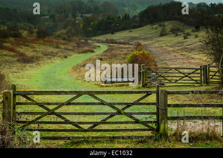 Green trail in the Chiltern hills popular with walkers - Stock Photo